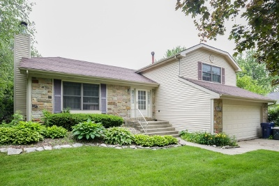 Algonquin Rental New: 720 Mulberry Court