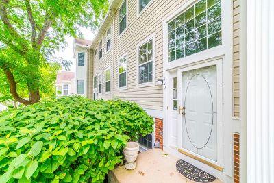 North Aurora Condo/Townhouse For Sale: 409 Hidden Creek Lane #409