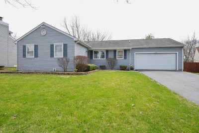 Naperville Single Family Home For Sale: 1308 Monmouth Avenue