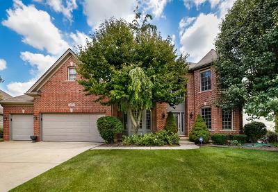 Naperville Single Family Home For Sale: 3728 Mistflower Lane