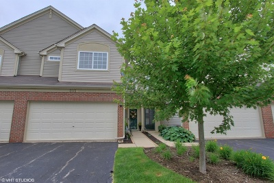 South Elgin Condo/Townhouse New: 205 Courtland Drive #B
