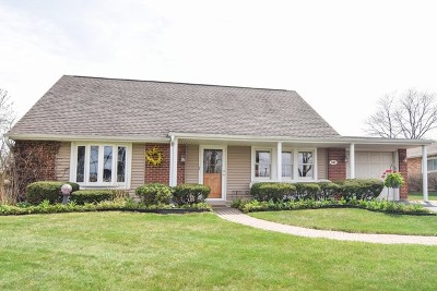 Hoffman Estates Single Family Home New: 545 Northview Lane