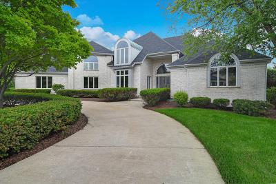 Burr Ridge Single Family Home For Sale: 6400 Hillcrest Drive