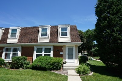 Schaumburg Condo/Townhouse New: 544 Manor Circle