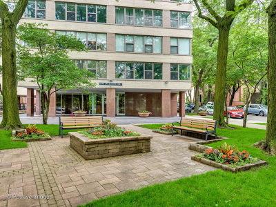 Condo/Townhouse For Sale: 2970 North Lake Shore Drive #4D-4E