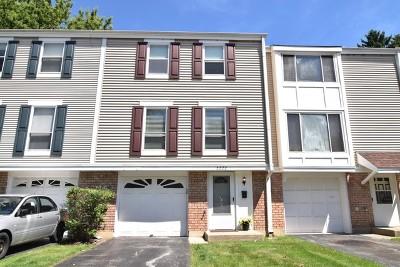 Hoffman Estates Condo/Townhouse New: 2222 Clifton Place