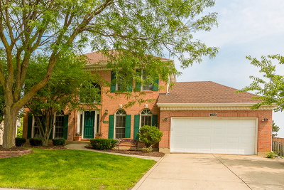 High Meadow Single Family Home For Sale: 2111 Yellowstar Lane