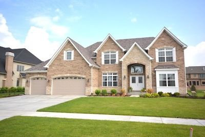 Naperville Single Family Home For Sale: 4543 Shumard Lane