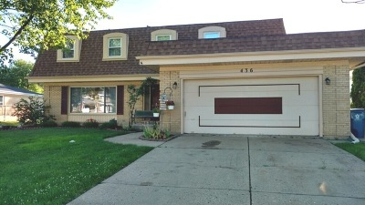 Schaumburg Single Family Home New: 436 Summit Drive