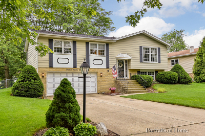 Wheaton Single Family Home For Sale: 1396 Brentwood Lane