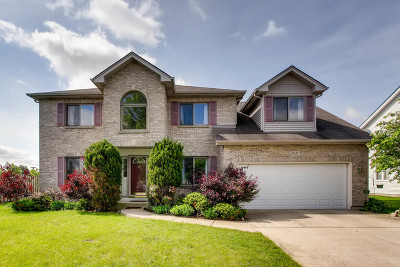 Naperville Single Family Home For Sale: 2020 Engle Road
