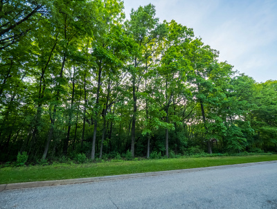 Mc Henry County Residential Lots & Land For Sale: 11202 Hill Crest Lane