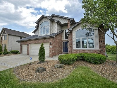 Matteson Single Family Home Contingent: 6207 Old Plank Boulevard