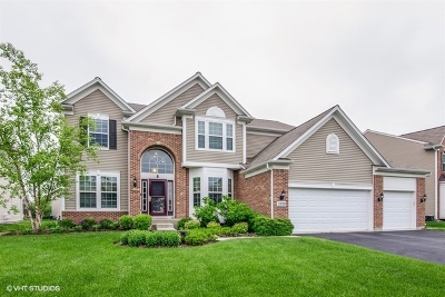 Carpentersville Single Family Home For Sale: 3528 Langston Lane