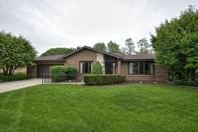 Orland Park Single Family Home For Sale: 8133 Elizabeth Avenue