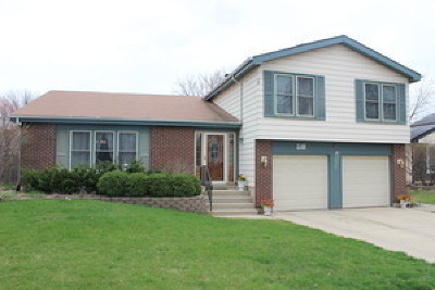 Bolingbrook Single Family Home New: 248 Whitewater Drive