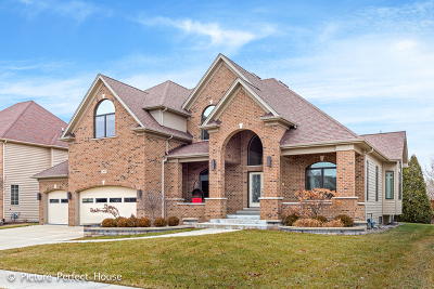 Naperville Single Family Home For Sale: 3107 Landore Drive