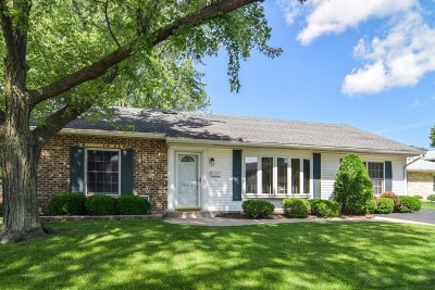Roselle Single Family Home For Sale: 652 Autumn Drive