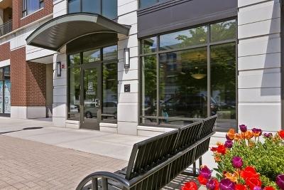 Burr Ridge IL Condo/Townhouse New: $318,000