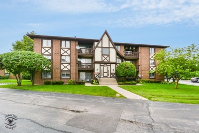 Palos Hills IL Condo/Townhouse New: $124,000