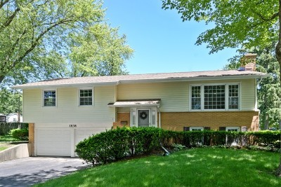 Arlington Heights Single Family Home New: 1838 East Jonquil Terrace