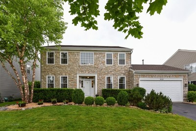 Carpentersville Single Family Home For Sale: 3112 Merrywell Court