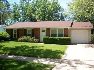 Bolingbrook Single Family Home For Sale: 145 Mayfield Drive