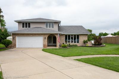 Homer Glen  Single Family Home For Sale: 14450 Gadwall Court