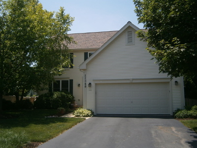 Plainfield Single Family Home For Sale: 11348 South Marathon Lane