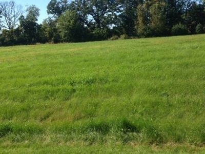 Mc Henry County Residential Lots & Land For Sale: 11217 Hill Crest Lane