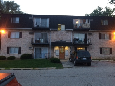 Palatine Condo/Townhouse New: 1305 North Baldwin Court #3C
