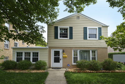 Arlington Heights Single Family Home New: 213 South Dryden Place