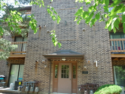 Lisle Condo/Townhouse For Sale: 2234 Abbeywood Drive #F