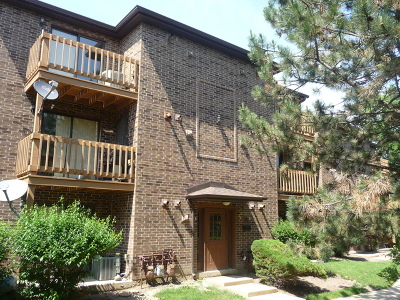 Lisle Condo/Townhouse New: 2220 Abbeywood Drive #F