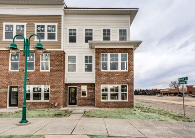 Woodridge Condo/Townhouse New: 3540 Kemper Drive