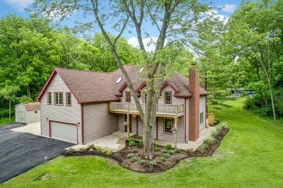 East Dundee Single Family Home For Sale: 655 Oakridge Road