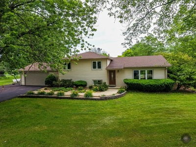 Naperville Single Family Home For Sale: 10s481 Whittington Lane