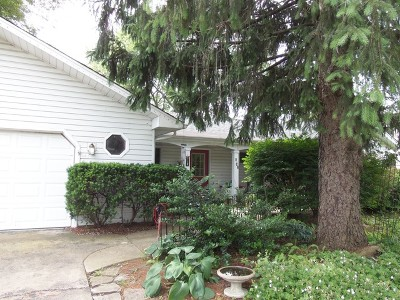Hinsdale Single Family Home New: 542 West 56th Street