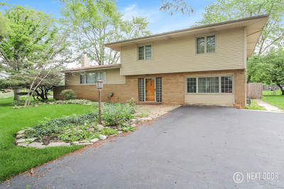 Palos Park Single Family Home For Sale: 13105 South Adsit Road