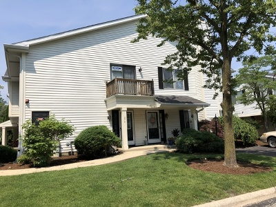 Clarendon Hills Condo/Townhouse For Sale: 374 Coventry Court #374