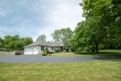 Spring Grove Single Family Home New: 10601 Michigan Drive