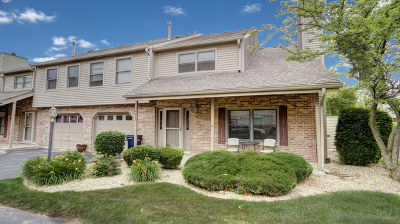Orland Park Condo/Townhouse New: 9344 Waterford Lane