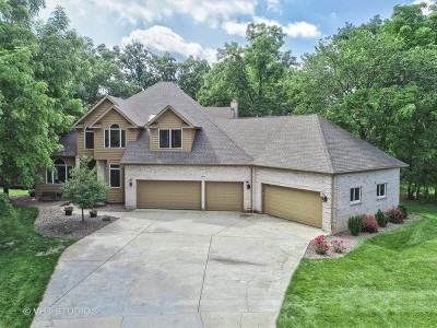 McHenry Single Family Home For Sale: 1475 Bay Oaks Drive