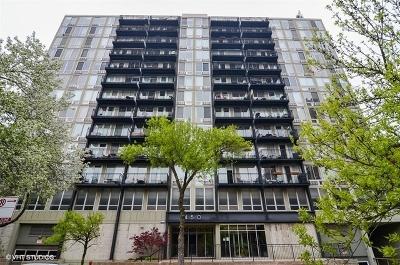 Chicago IL Condo/Townhouse New: $190,000