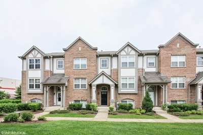 Lake Zurich Condo/Townhouse New: 82 Rosehall Drive