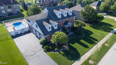 Orland Park Single Family Home For Sale: 14065 Marilyn Terrace