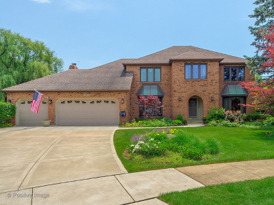Naperville Single Family Home New: 486 Chippewa Drive