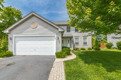 Carpentersville Single Family Home For Sale: 6827 High Gate Road