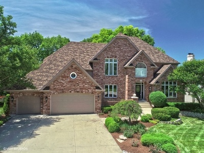 Naperville Single Family Home New: 2211 River Woods Drive