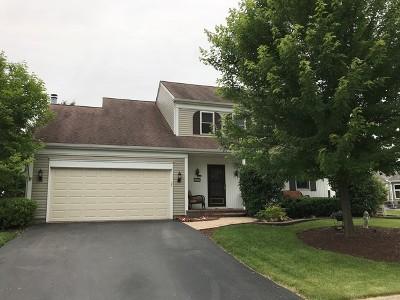 Aurora Single Family Home New: 3259 Salem Court